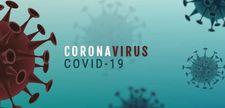 Abbildung Corona-Virus